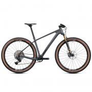 2021 Radon Jealous 10.0 EA Hardtail 29 Mountain Bike