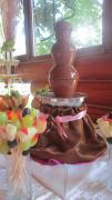 Chocolate fountain m Novovolynsk