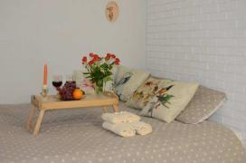 Cozy, stylish apartment in Kharkov, rent